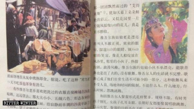 『ホータンのウイグル族』の原文に掲載されていたウイグル族の少女の挿絵。